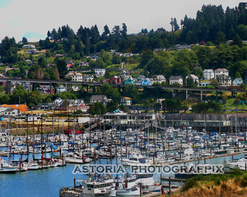 SM-221, west mooring basin, astoria, oregon, boats, sailboats, hillside, houses