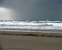 Astoria Photografpix, SM-411, winter, sea, gulls, storm, ocean, beach, hammond, sunset beach